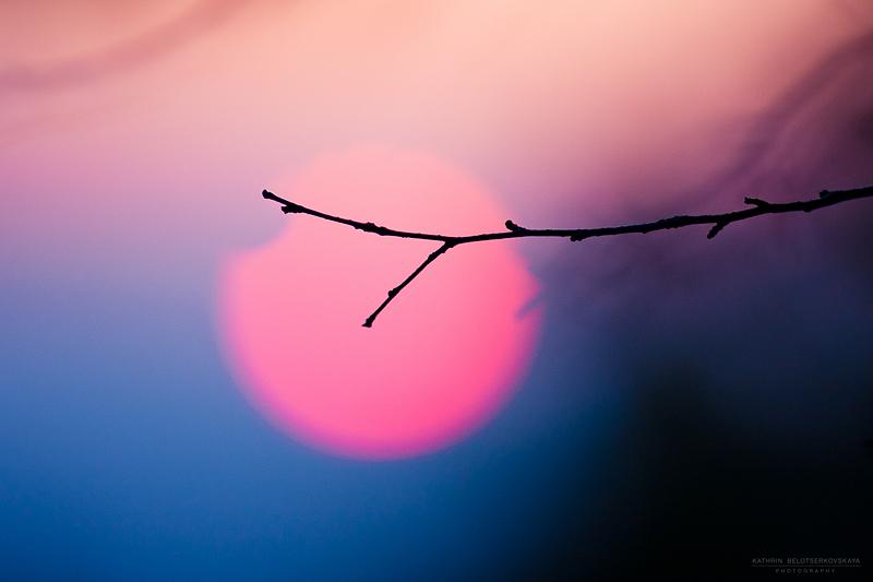 Солнце. Пейзаж. Закат. Фотограф Катрин Белоцерковская