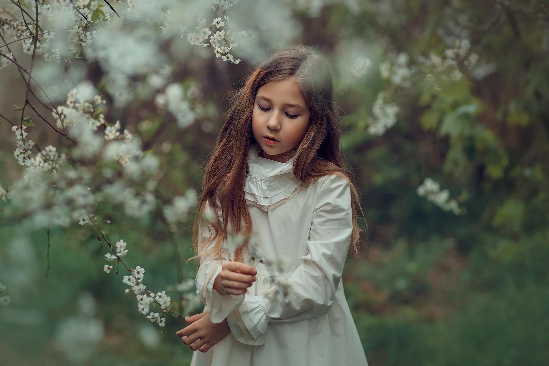 фотосъемка цветения в коломенском
