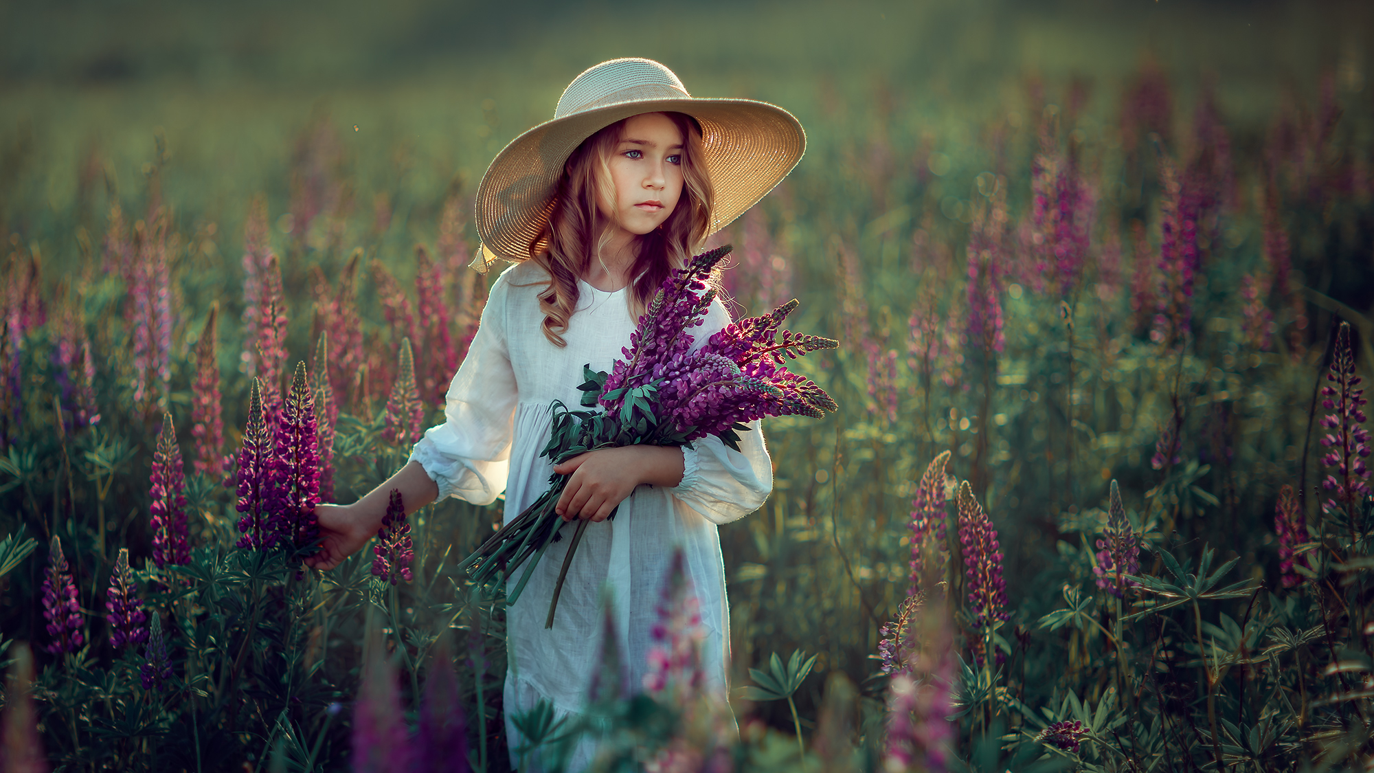 девочка в шляпке с люпинами